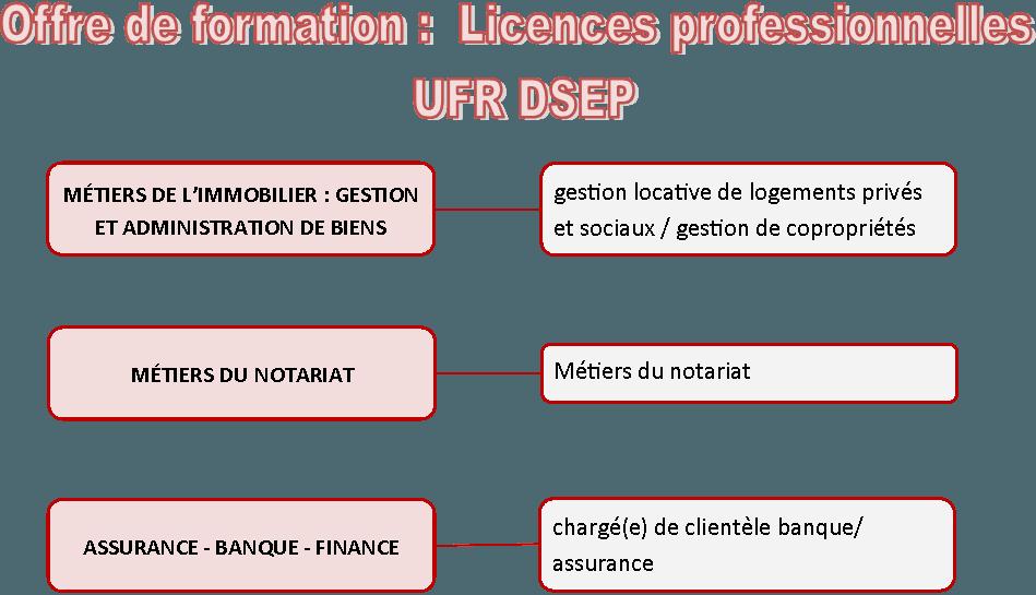 offre licences pro2