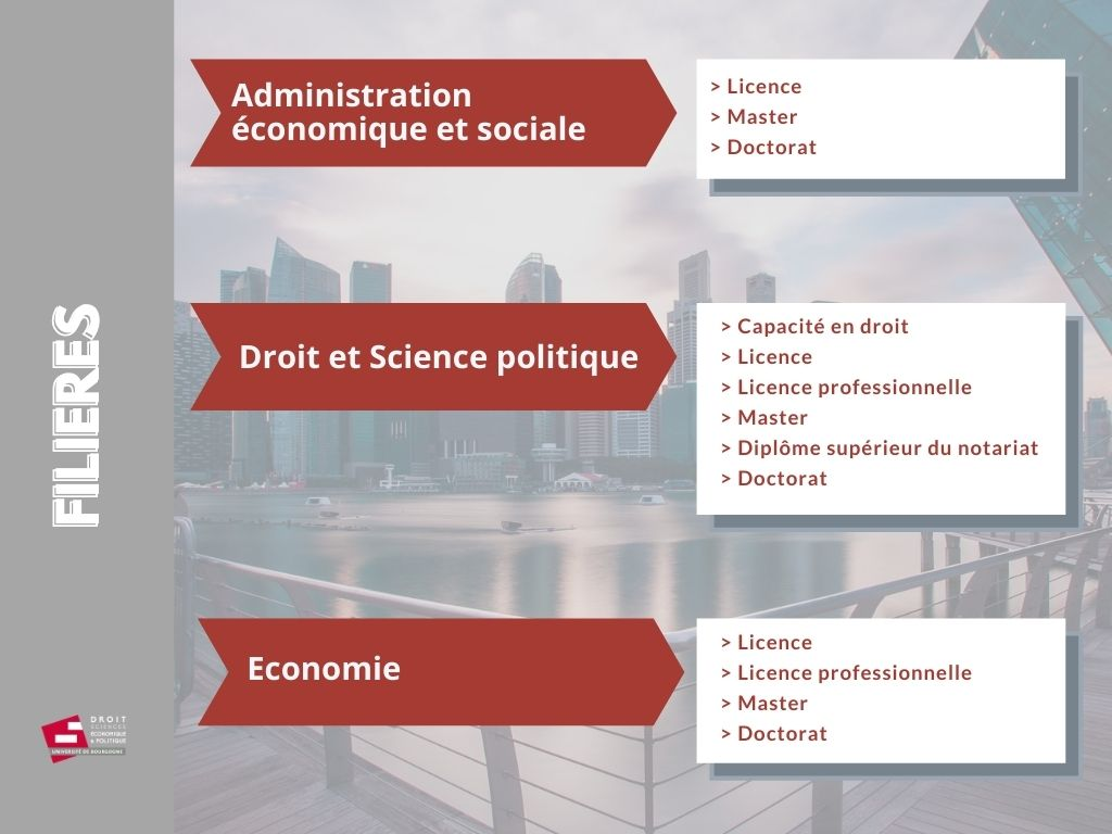 schema offre formation DSEP 2021 filieres